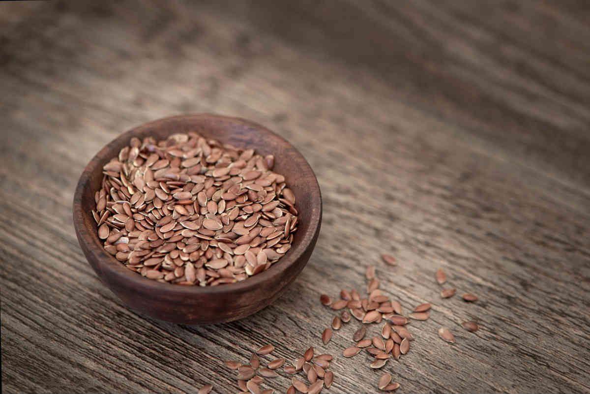 Šta je laneno seme?