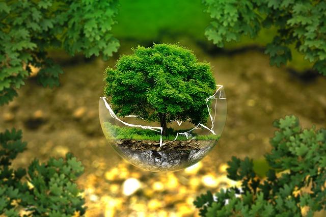 Aparati za sušenje ruku čuvaju našu planetu