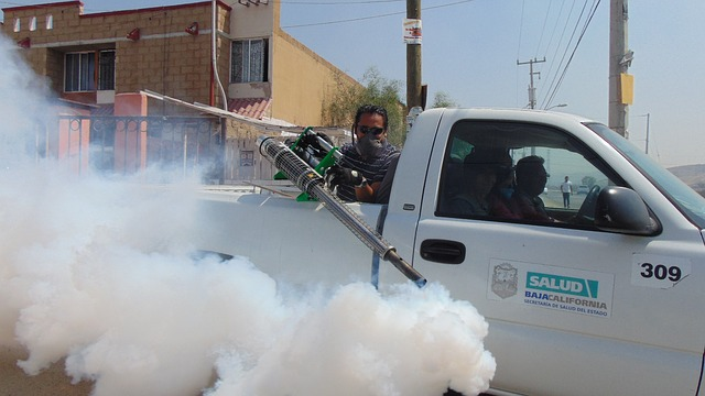 Kako pravilno uraditi dezinsekciju insekata